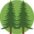 Natural Plantation Grown Wood Flooring, Bamboo Flooring and Cork Flooring