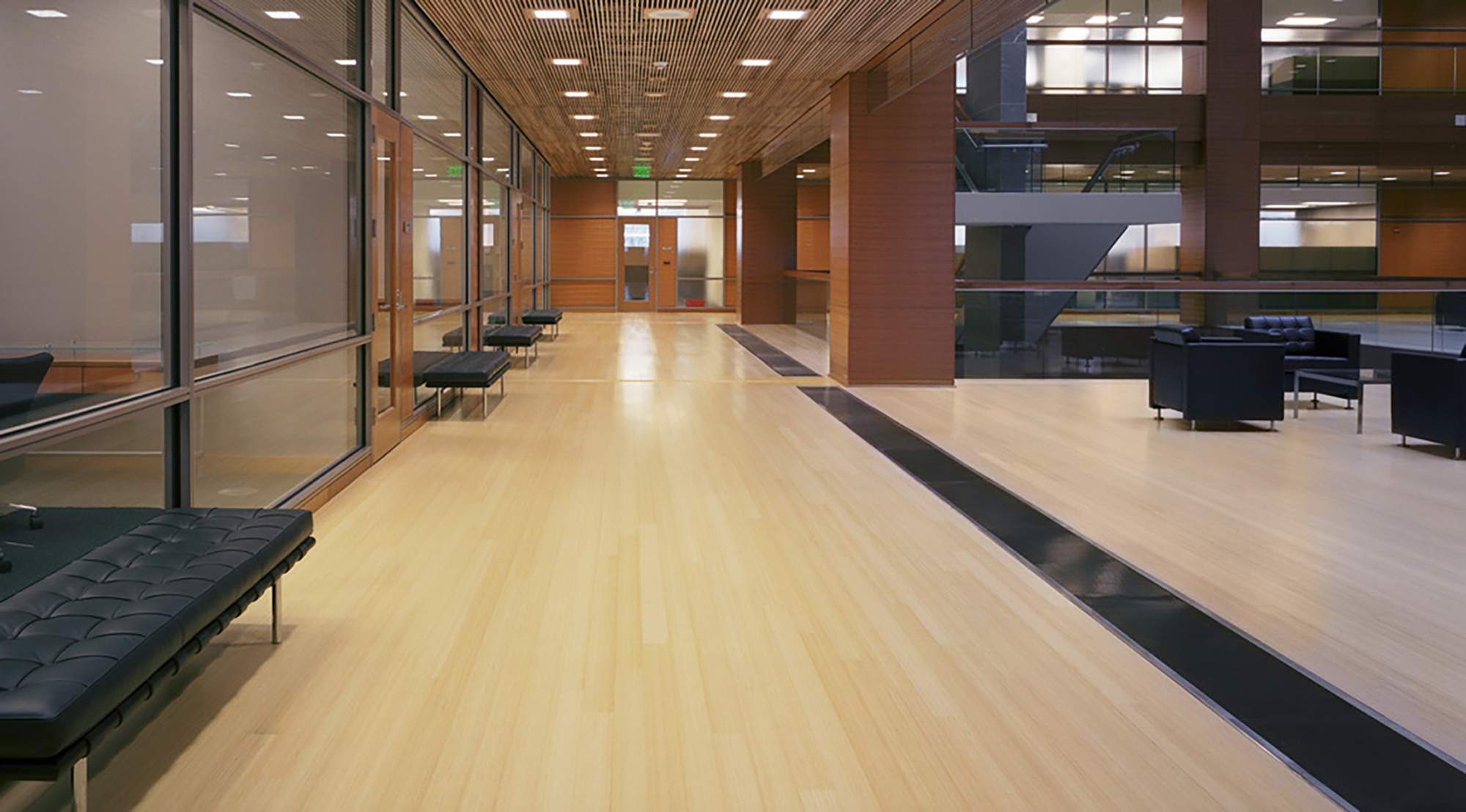 Commercial Bamboo Wood Flooring Etx Surfaces